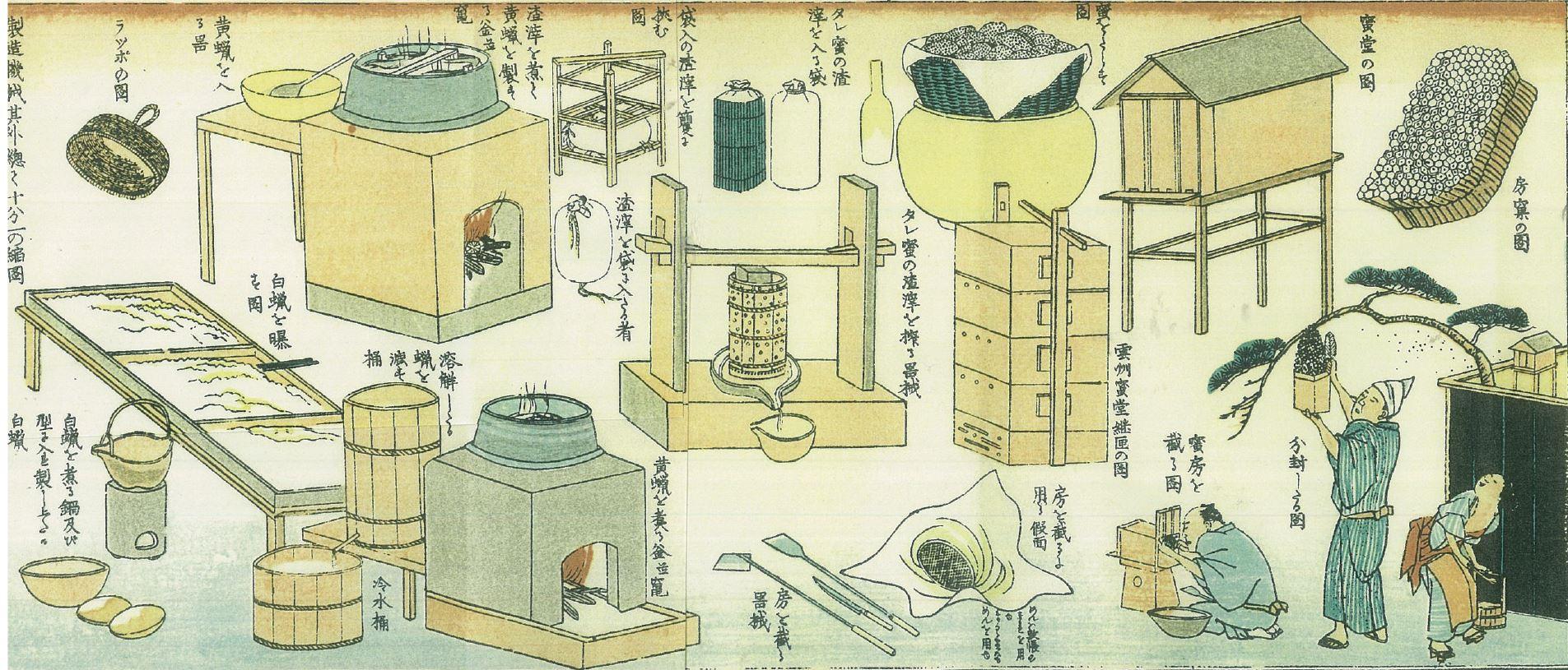 丹波修治 編撰、溝口月耕 図画 (1872 )教草(おしえぐさ)『蜂蜜一覧』