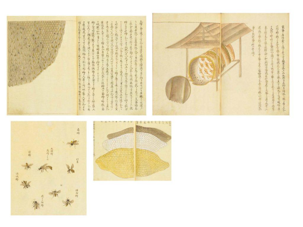 栗本丹州(1811) 『千虫譜』